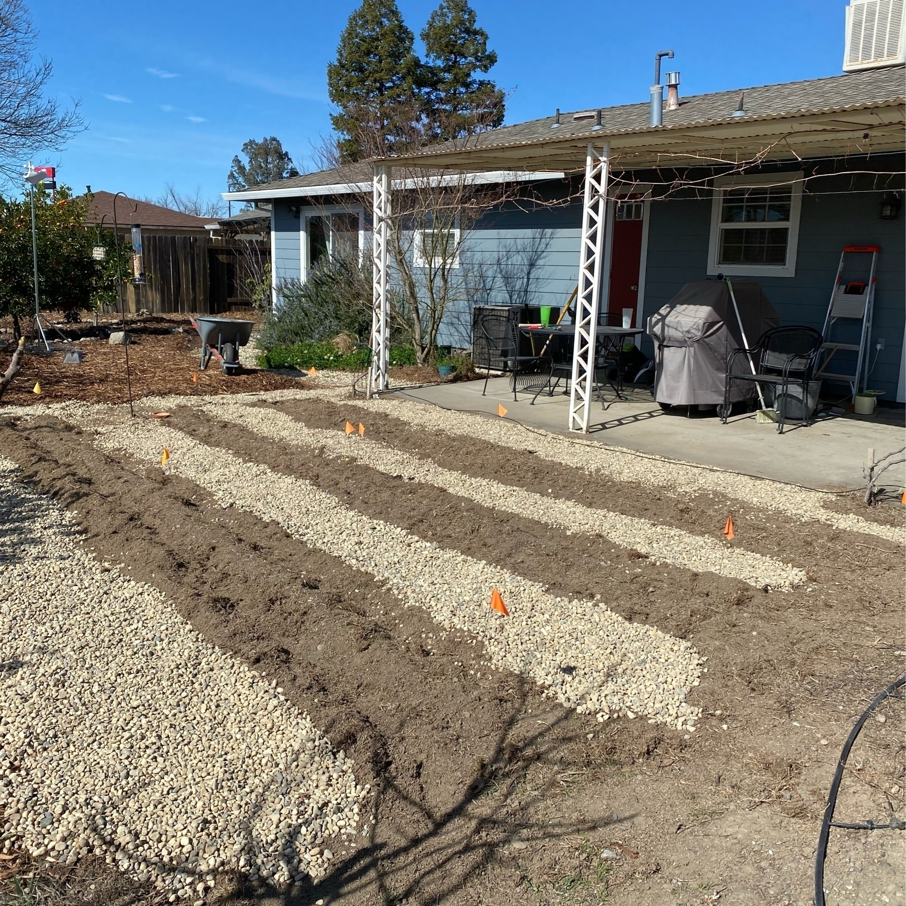 tilled and rocked with three garden rows