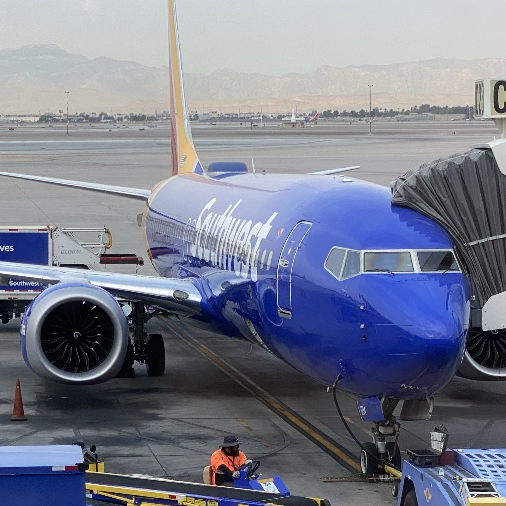 Southwest 737-MAX8 at the gate.