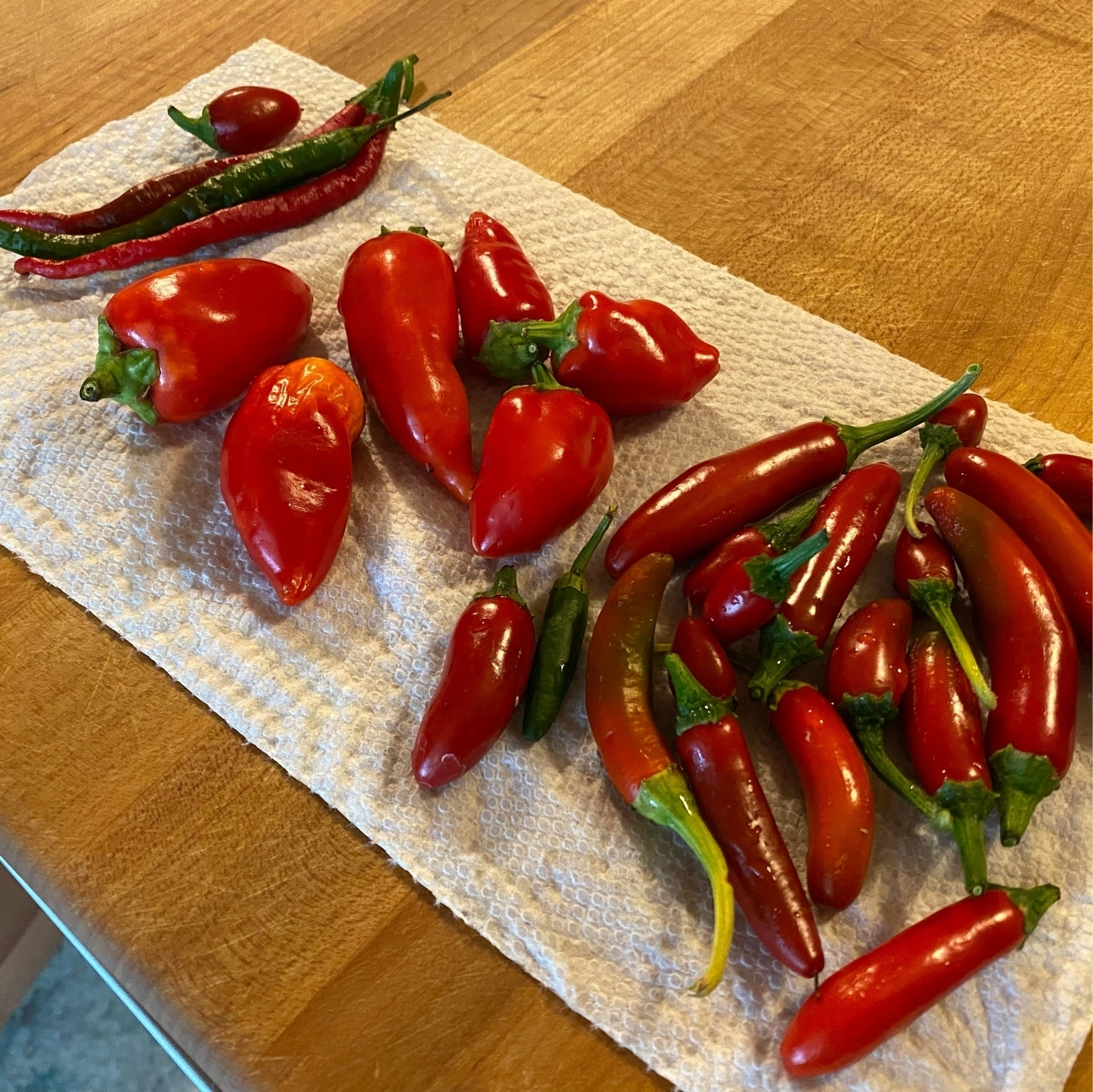 red ripe thai, santa fe, serrano, and jalepeno peppers on a cutting board